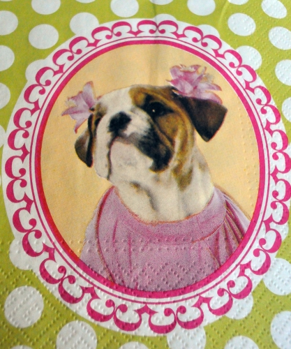 serviette papier bouldogue
